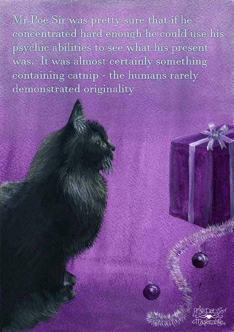 Mr Poe Sir purple card